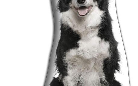 Polštářek Adorable Cushions Border kolie