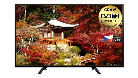 Televize Panasonic TX-49ES403E černá