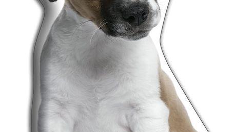 Polštářek Adorable Cushions Jack Russell