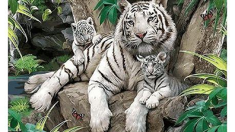 DIY obraz s bílými tygry