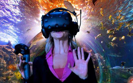 Hodina zábavy ve světě virtuální reality