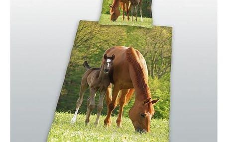 HERDING Bavlněné povlečení Koně na pastvě 140x200, 70x90 cm