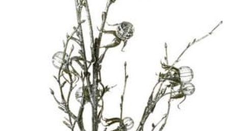 Dekorativní větvička Parlane Wild Crystal,délka88cm