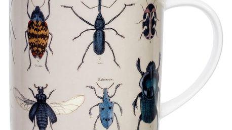 Hrneček Jay Biologica Beetles