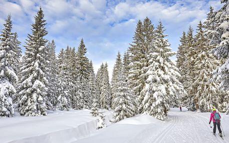 Zima v Krkonoších pro dva: polopenze i sauna