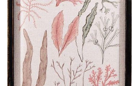 Nástěnný obraz Moycor Coral