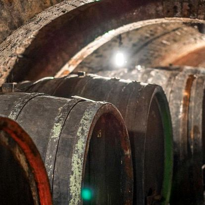 3 dny neomezené konzumace vín a řízená degustace ve Velkých Pavlovicích