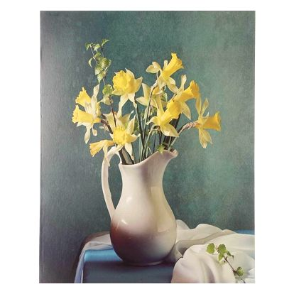 Obraz na stěnu - Žluté narcisy