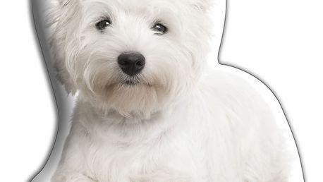 Polštářek Adorable Cushions Westík - doprava zdarma!