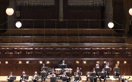 Vstupenka na libovolný koncert v Obecním domě z programu Bohemian Music Agency.