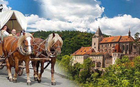 Rodinná jízda koňským povozem na Křivoklátsku