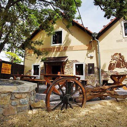 Jižní Morava v penzionu u Znojma s neomezenou konzumací sudového vína a polopenzí – i dámská jízda nebo romantická varianta
