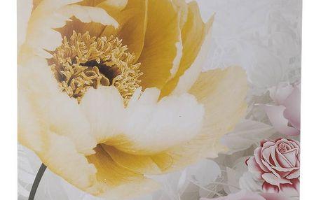 Obraz na stěnu - Žlutý tulipan