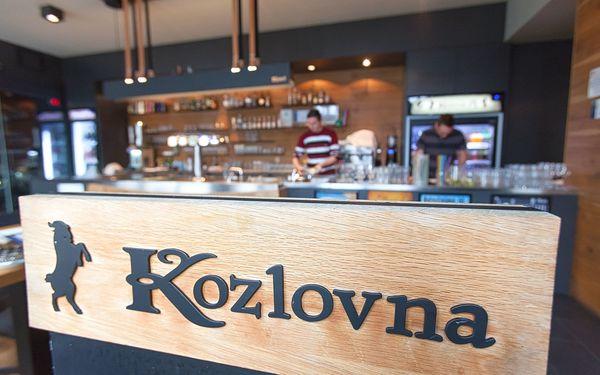 Kozlovna - M3