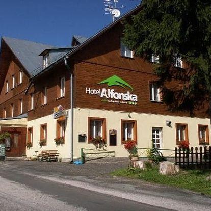Dovolená v 3*Hotelu Alfonska pro dva s polopenzí, volným vstupem na multifunkční hřiště, do bazénu.