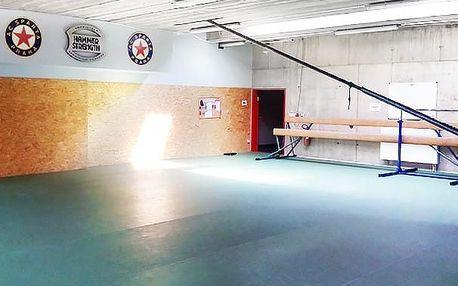 4týdenní fitness kurz pro muže: 8× 60min. trénink v Praze