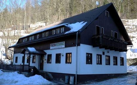 Silvestr nebo zimní dovolená v penzionu V Zatáčce. Super možnosti lyžování a výletů do přírody.