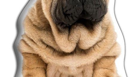 Polštářek Adorable Cushions Šarpej