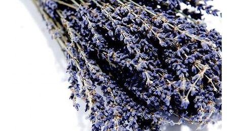 LE CHATELARD Kytice sušené levandule z Provence, fialová barva