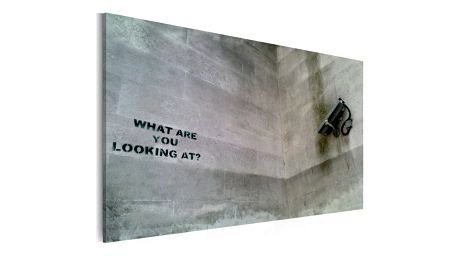Obraz na plátně - What are you looking at? (Banksy) 60x40 cm