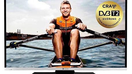 Televize GoGEN TVF 43N384 STWEB černá + Doprava zdarma