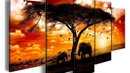 Obraz na plátně - Hejno ptáků nad savanou 100x50 cm