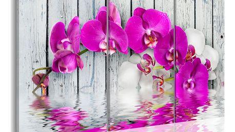 Obraz na plátně - harmonie: orchidea - triptych 120x80 cm