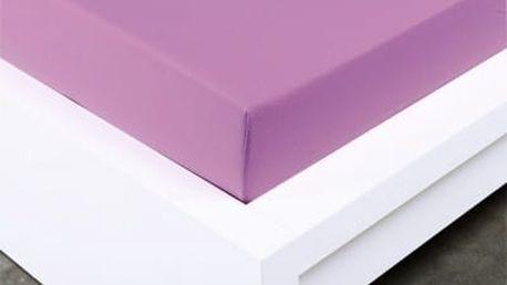 XPOSE ® Jersey prostěradlo Exclusive dvoulůžko - šeříková 180x200 cm