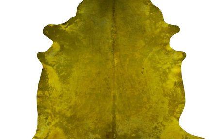 Hořčicově žlutý koberec z hovězí kůže, 255 x 226 cm - doprava zdarma!
