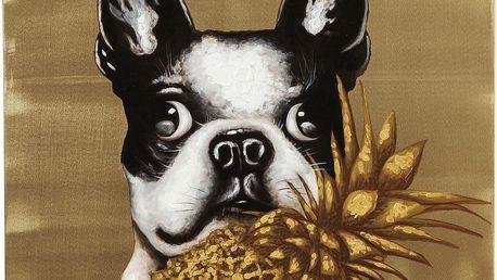 Obraz Kare Design Touched Dog with Pineapple, 80x80cm - doprava zdarma!