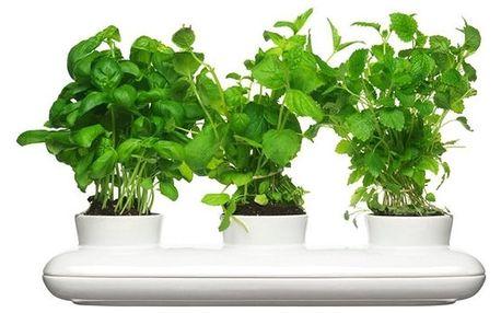 Květináč na bylinky Sagaform Trio Herb - doprava zdarma!