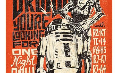 Nástěnná cedule PosterPlate Star Wars Legends - Droids