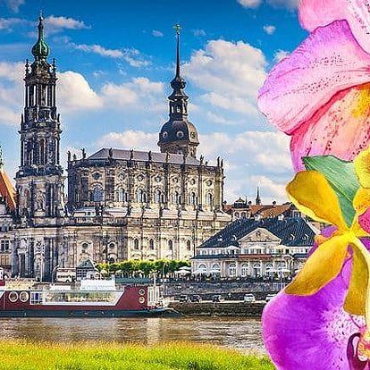 Zájezd pro 1 do velikonočních Drážďan na nákupy a výstavu orchidejí