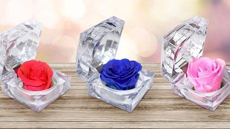 S láskou navěky: Nesmrtelná růže v dárkové krabičce