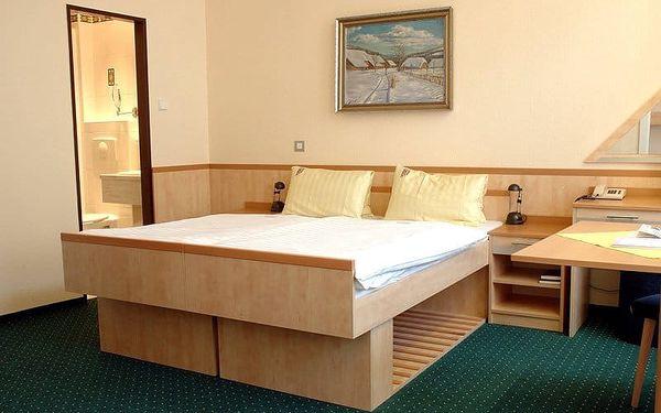 Hotel Slovan***