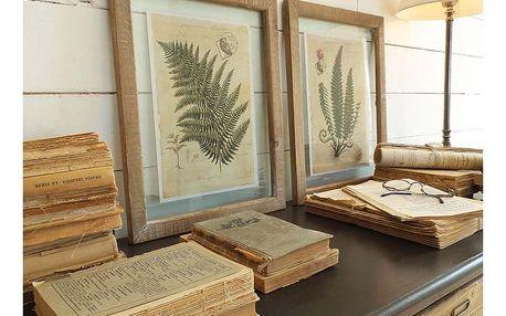 Set 2 obrazů v dřevěných rámech Orchidea Milano Boitanique - doprava zdarma!