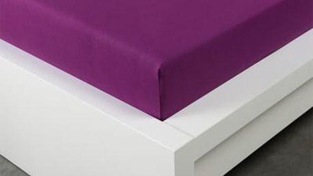 XPOSE ® Jersey prostěradlo jednolůžko - borůvková gramáž 150g/m 90x200 cm