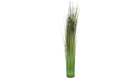 Svazek trávy markus, 48 cm