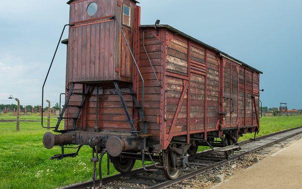 1denní výlet do koncentračního tábora Osvětim a Březinky3