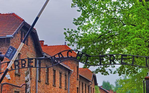 1denní výlet do koncentračního tábora Osvětim a Březinky5