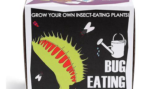 Pěstitelský set se semínky masožravé rostliny Gift Republic Bug Eating Plants