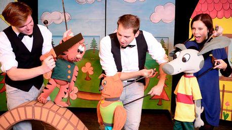 Vstup na dětské představení Káťa a Škubánek