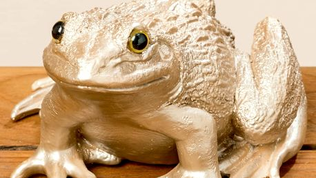 Dekorativní soška Boltze Frog