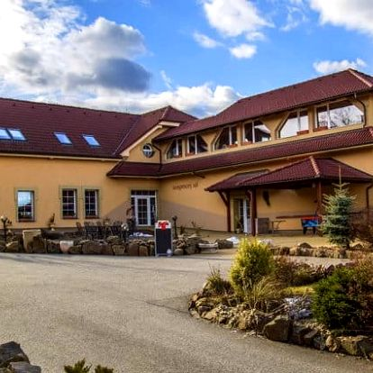 3–4denní pobyt pro 2 se saunou a polopenzí v hotelu Allvet*** u Brna