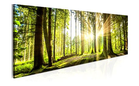 Obraz na plátně Artgeist Daylight 135x45cm - doprava zdarma!