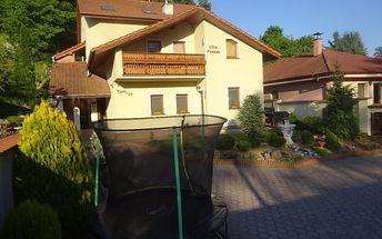 Villa Pšenek