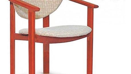 Židle s područkami STRAKOŠ DF1