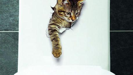 3D samolepka s mourovatým koťátkem - dodání do 2 dnů