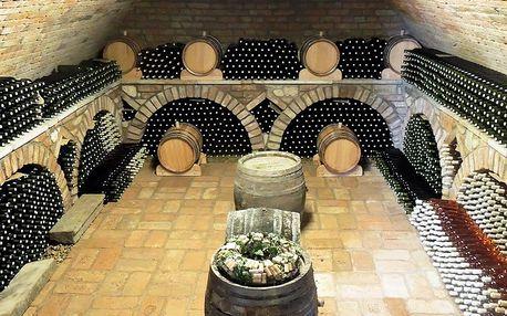 3denní pobyt s degustací vína u Mikulova