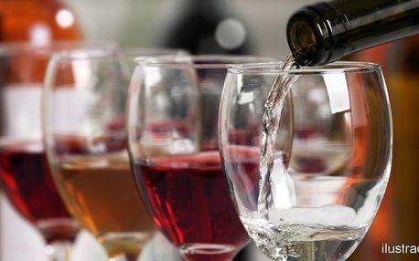 Vinná degustace vinařství Nešpor & Rajský